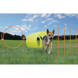 Outward Hound Agility Starter Kit Outdoor-0