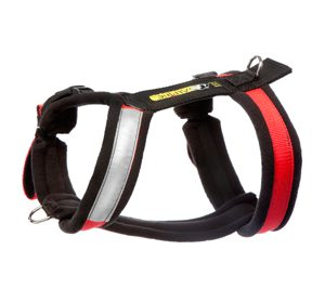Alpine Outfitters Urban Trail Adjustable Harness-0