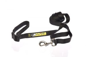 Alpine Outfitters Double Duty Leash with Traffic Handle-0