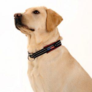 ComfortFlex Limited Slip Collar-0